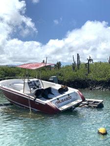 Vanesa Lorenzo | Galapagos Islas Encantadas Guia de Viaje